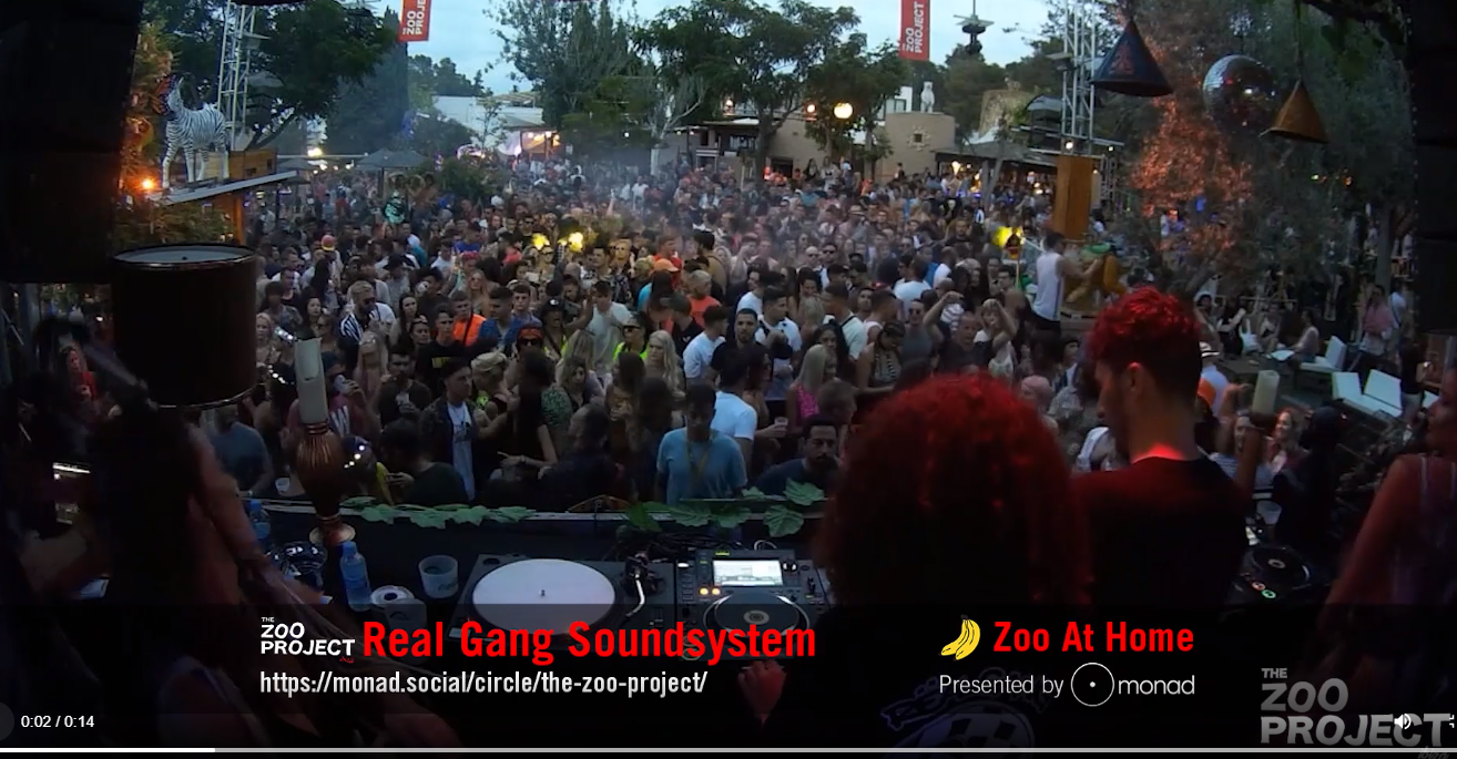 Real Gang Sound System - Zoo at Home